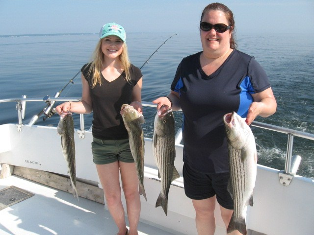 Maryland fishing report chesapeake bay fishing report for for Chesapeake fishing report