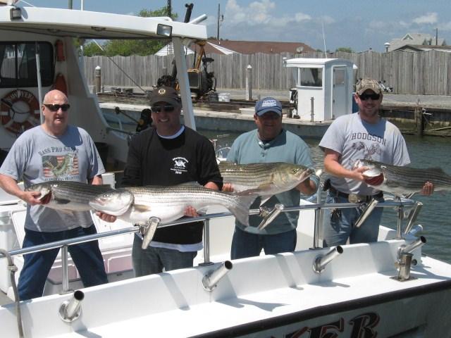 Maryland fishing report chesapeake bay fishing report for for Chesapeake bay charter fishing